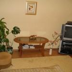 аренда квартиры посуточно в Казани — 3-комнатная квартира Ямашева 101(Центр)