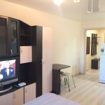 1-комнатная квартира Московская 121к1(Парк Победы)